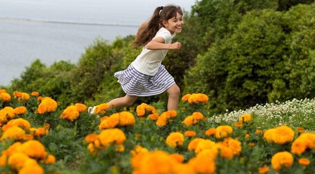 noko-flower1